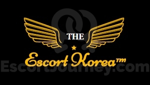 VIP Escort in Seoul (Incheon, Suwon)